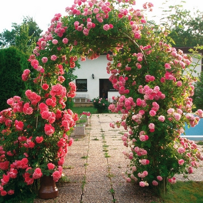 Zahradní brána